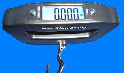 WH-A09. Электронные весы-безмен до 50 кг (10 г)